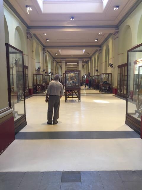 Egyptian Museum of Cairo King Tut Corridor